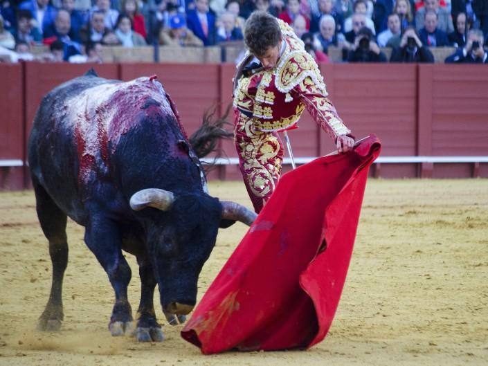 Sevilla, 26 de Abril 2015