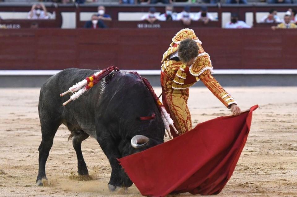 Manuel Escribano, oreja de peso en Madrid con los Victorinos